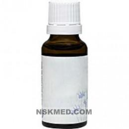 ECHINACEA D 2 Dilution 20 ml