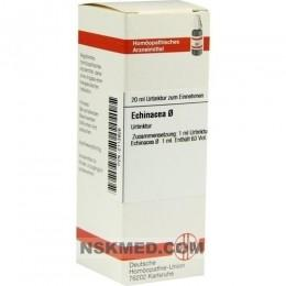 ECHINACEA HAB Urtinktur 20 ml