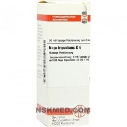 NAJA TRIPUDIANS D 6 Dilution 20 ml