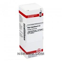 NAJA TRIPUDIANS D 12 Dilution 20 ml