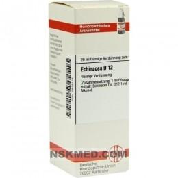 ECHINACEA HAB D 12 Dilution 20 ml