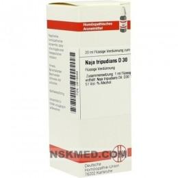 NAJA TRIPUDIANS D 30 Dilution 20 ml