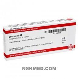 ECHINACEA HAB D 12 Ampullen 10X1 ml