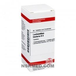 LACHNANTHES tinctoria D 3 Tabletten 80 St