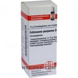ECHINACEA PURPUREA D 1 Globuli 10 g
