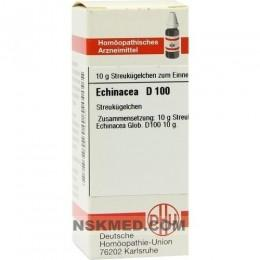 ECHINACEA HAB D 100 Globuli 10 g