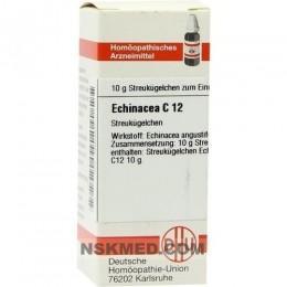 ECHINACEA HAB C 12 Globuli 10 g