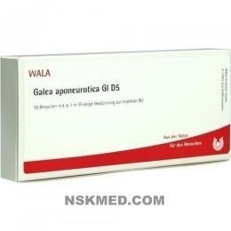 GALEA APONEUROTICA GL D 5 Ampullen 10X1 ml